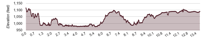 Course Elevation Profile