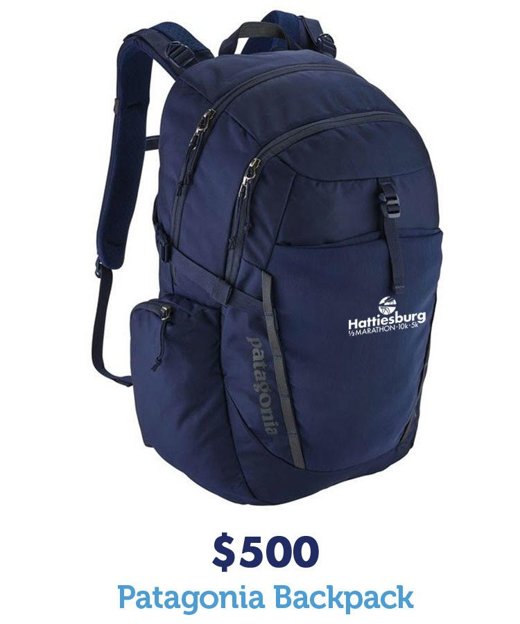 $500 Patagonia Backpack